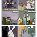 comic-2012-07-05-Bunnies-in-Space-The-Beginning-Bun-and-Crossbones.jpg